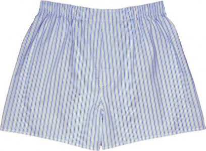 Charlie Dog The Alonzo Stripes Loose Boxer Shorts Underwear Light Blue 697-128