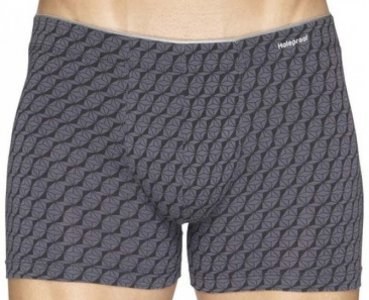 [2 Pack] Holeproof Att Ela Tripped Trunk Underwear Print 06 MZAG1A