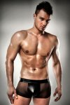Passion Lingerie Sheer Boxer Brief Underwear Black 003