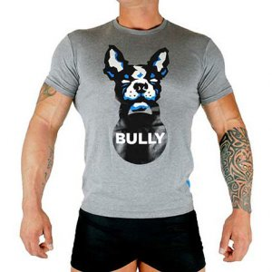 Bullywear Bully Short Sleeved T Shirt Grey BULLY
