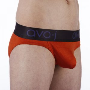 Ava-j Low Rise Brief Underwear Burnt Orange