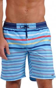 2(x)ist Graduate Stripe Maui Boardshorts Beachwear Wave 89028 USA1