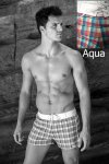 Sauvage Plaid Retro Lycra Shorts Swimwear Aqua