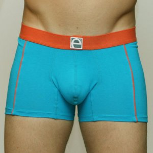 Elite Underwear Boxer Brief Dublin Turquoise 3992