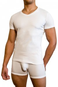 Baskit V Neck White T Shirt A1650