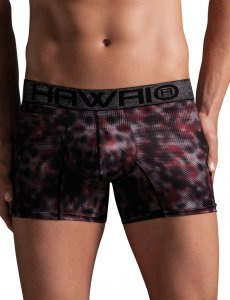 Hawai Face Cloud Boxer Brief Underwear Grey 41727