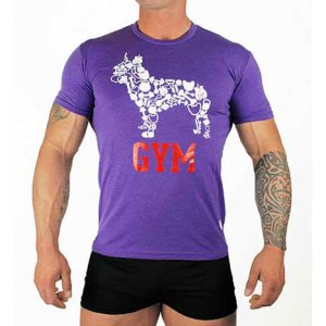 Bullywear Gym Short Sleeved T Shirt Purple GYM