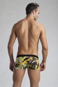 Geronimo Boxer Square Cut Trunk Swimwear Green 1114B1