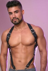 Kristen Bjorn Traditional Leather Harness Black