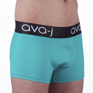Ava-j Solid Boxer Brief Underwear Spirit Turquoise