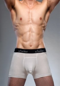 Activeman See Through Boxer Brief Underwear White A130