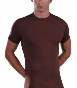 Lord Elastic Short Sleeved T Shirt Brown 1200