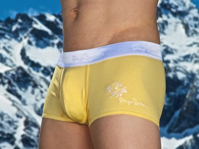 Diego Barberi Edelweiss Boxer Brief Underwear Yellow
