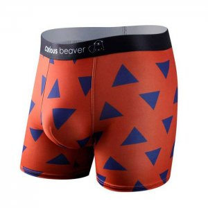 Curious Beaver Try Angles Boxer Brief Underwear