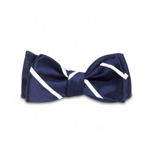 Magnetie Satin Dotted / Stripe Reversible Bow Tie Navy Blue ...