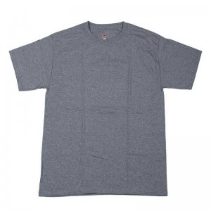 Hanes Tagless Short Sleeved T Shirt Grey 5250