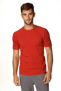 4-rth Hybrid Raglan Short Sleeved T Shirt Cinnabar Red