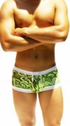 Icker Sea Flowers Square Cut Trunk Swimwear Green COB-12-115