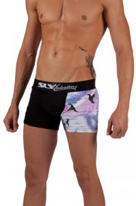 Sly Underwear Seduction Boxer Brief Underwear 0020014W