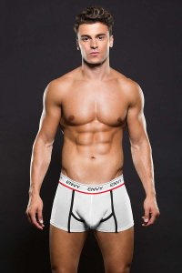 Envy Logo Elastic Low Rise Mesh Trunk Underwear White E038