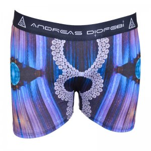 Andreas Diofebi The Second Coming Kylie Boxer Brief Underwear
