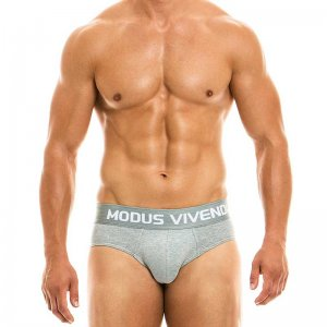 Modus Vivendi Classic Brief Underwear Grey 02915