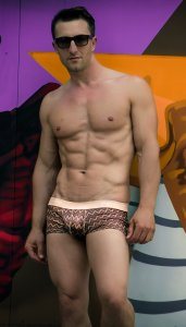 Frederiqua de Silk Thunderbolts Boxer Brief Underwear