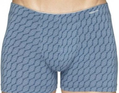 [2 Pack] Holeproof Att Ela Tripped Trunk Underwear Print 04 MZAG1A