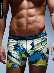 Frank Dandy Gold Coast Boxer Brief Underwear Dark Navy Blue 10182-325