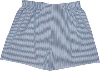 Charlie Dog The Adam Stripes Loose Boxer Shorts Underwear Light Blue 509-128