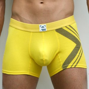 Elite Underwear Boxer Brief Santa Fe 2142
