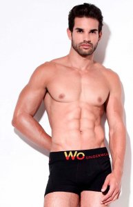 WO Underwear Solid Boxer Brief Underwear Black