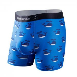 Curious Beaver Free Willy Boxer Brief Underwear Whales