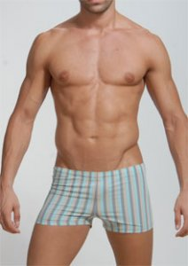 Geronimo Stripes Square Cut Trunk Swimwear Grey/Blue 908b7