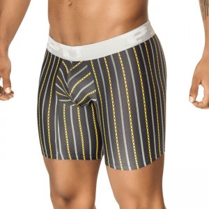 PPU Fiesta Stripe Long Leg Boxer Brief Underwear Grey 1401