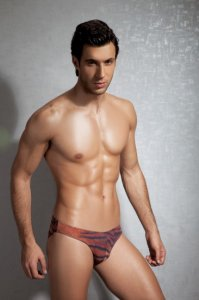 Doreanse Tiger Slip Brief Underwear 1287