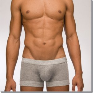 Modus Vivendi Sport Pure Boxer Brief Underwear Grey 17021