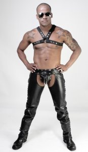 Whip It Leather Classic Harness HN5