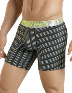 Hawai Stripe Boxer Brief Underwear Grey 4985