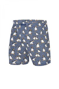 Cornette Penguins 2 016/08 Loose Boxer Shorts Underwear