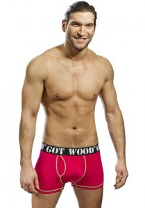 Got Wood Mountain Sunrise Boxer Brief Underwear