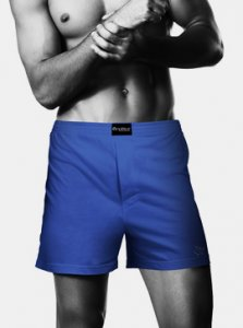Nukleus Fruit Blueberry Panache Loose Boxer Shorts Underwear Blue NFR-9077