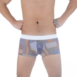Don Moris Pathwork Sheer Boxer Brief Underwear DM291141