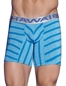 Hawai Retro Striped Boxer Brief Underwear Blue 4966