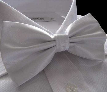 Distino Of Melbourne Solid Bow Tie White DB5