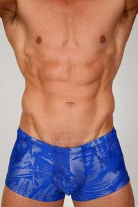 Pistol Pete Ice Midcut Square Cut Trunk Swimwear Royal MC505-165