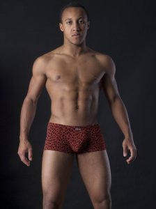 MANstore M260 Mini Pants Boxer Brief Underwear Brick 2-08292/3508