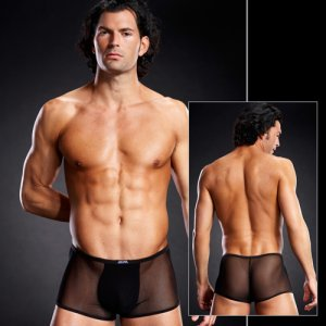 Blue Line Micro Mesh Trunk Boxer Brief Underwear Black BLM008
