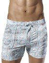 Clever Snails Square Cut Trunk Swimwear Grey 0601