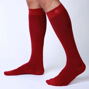 Bonne Cle Gentlemen's Club Charlie High Knee Socks Burgundy
